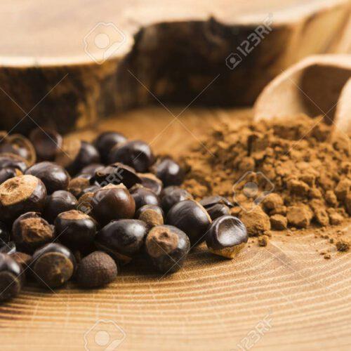 guarana semena dnes